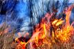Wildland Fires Investigation